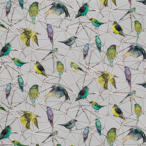 Osborne & Little Aviary Fabric F7011-01