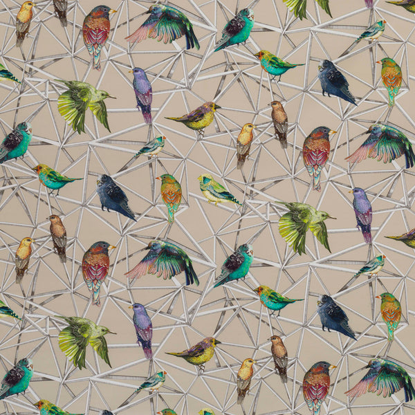 Osborne & Little Aviary Fabric F7011-02