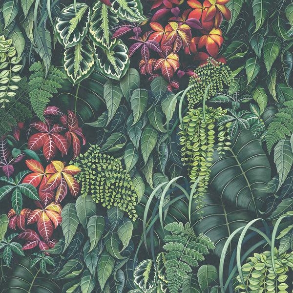 Osborne & Little 'Green Wall' Wallpaper W7330-01