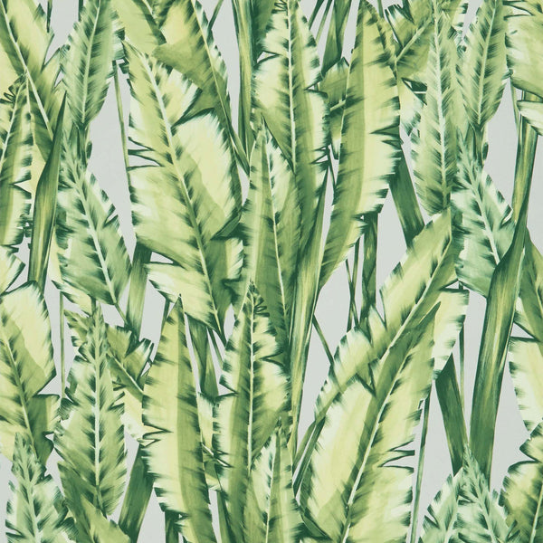 Osborne & Little 'Tiger Leaf' Wallpaper W7333-02