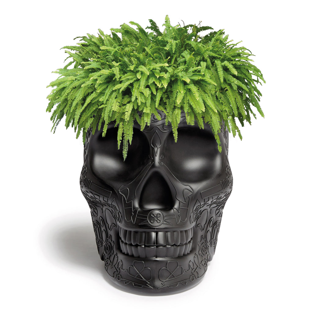 Mexico Skull Planter & Champagne Cooler by Studio Job Black Front