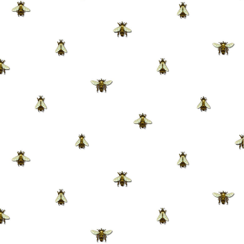 Timorous Beasties 'Wild Honey Bee Spot' Wallpaper