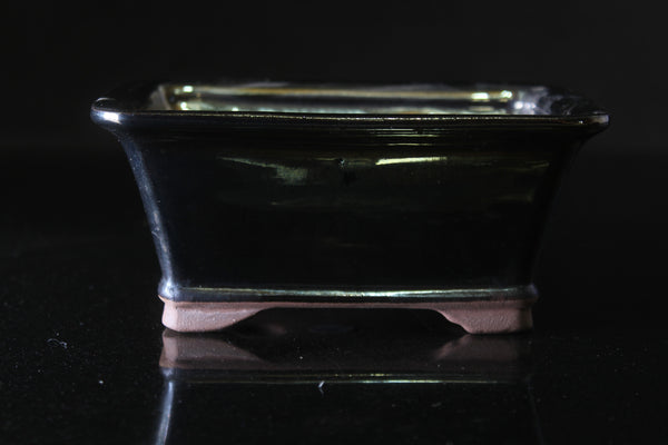 Black metallic Glazed rectangular Bonsai Pot - 16 cm