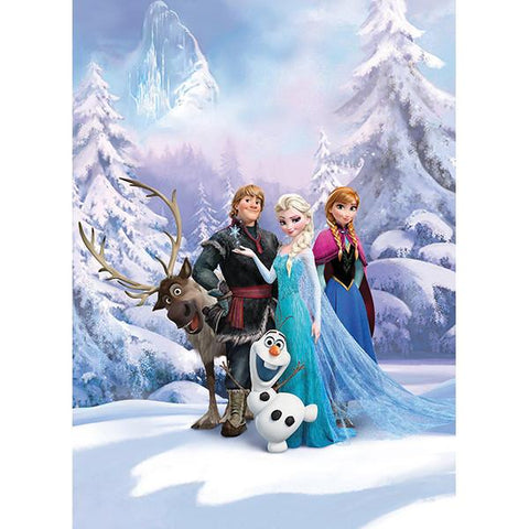 Frozen   Frozen Winter Land Mural