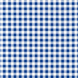 Blue Gingham Peel And Stick Liner