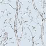 Blue Woods Peel And Stick Wallpaper