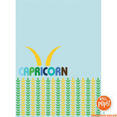 Capricorn Dry-Erase Peel and Stick Board