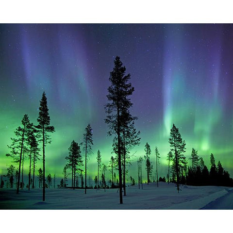 Aurora Borealis/ Northern Lights Wall Mural