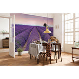 Provence Mural