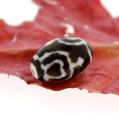 Dzi Beads,New Items Default Lotus and Vase True Agate Dzi Bead dz057