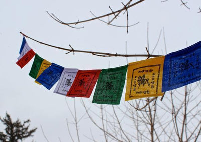 Prayer Flags Default Tiny Windhorse Prayer Flags Set of 15 pf054