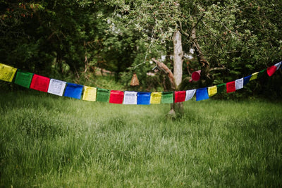 Prayer Flags Windhorse Happiness Prayer Flag PF155