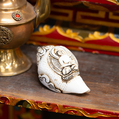 Statues Meditating Buddha Conch Shell ST230