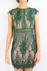 Lila Lacy Mini Dress in Forest Green
