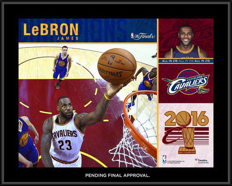LeBron James Cleveland Cavaliers 2016 NBA Finals Champions 10.5