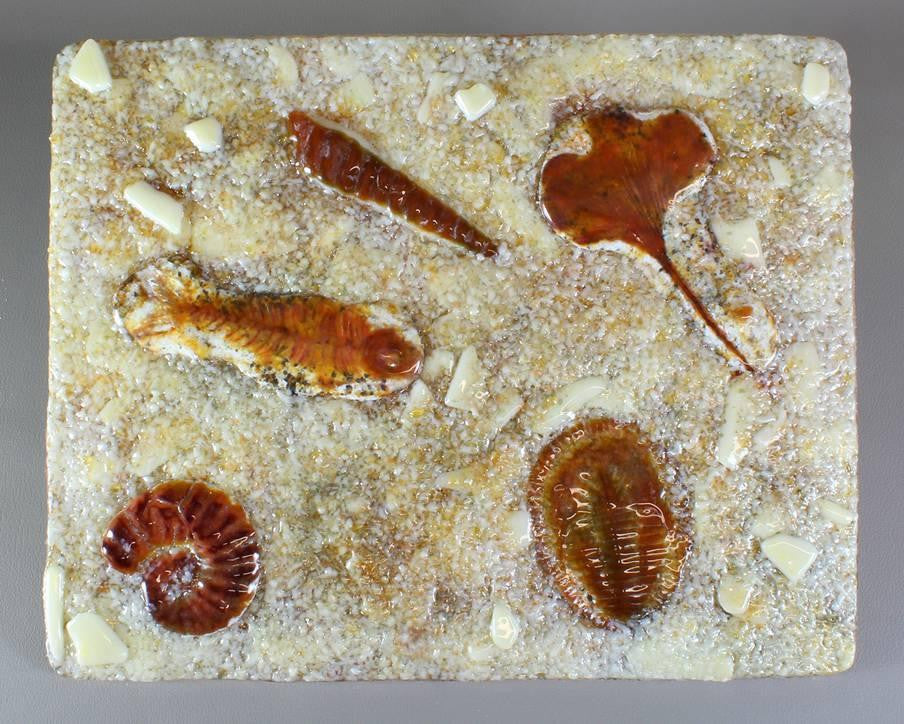 Fossils Texture For Tile Mold For Glass Casting Slumping