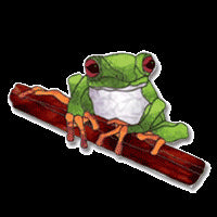 Free Stained Glass Patterns Red Eyed Tree Frog By Jillian Sawyer
