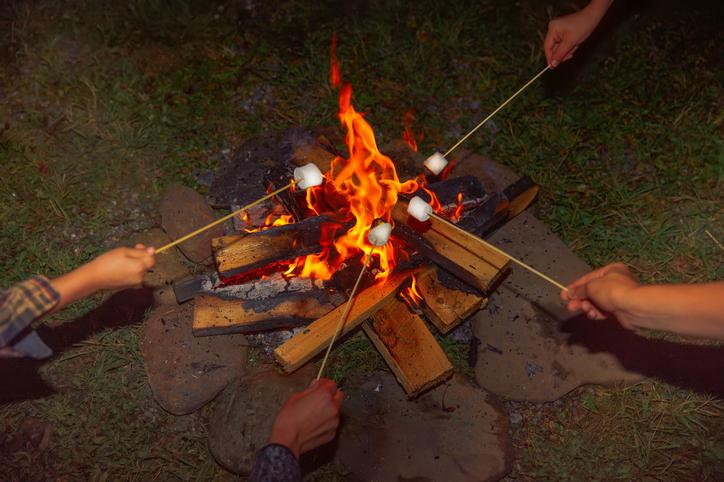 Campfire Roasting Marshmallows