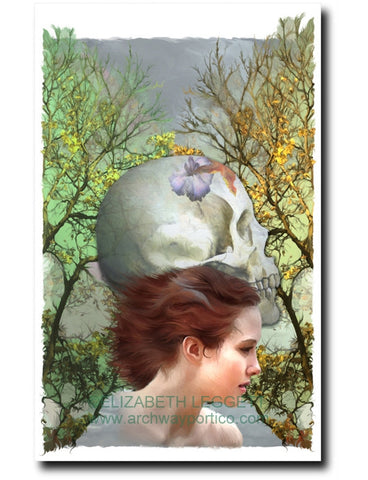 Momento Mori (2006 Co-Muse) - Portico Arts - Art Print by Elizabeth Legget