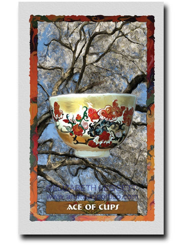 Ace Of Cups - Portico Arts - Art Print by Elizabeth Legget