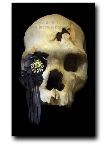 Elizabeth Leggett | Month of Fear entry for 2018, showing a skull with a black flower coming out of one eye socket