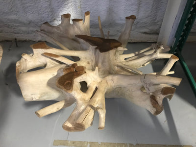 Suar Wooden Root Coffee Table