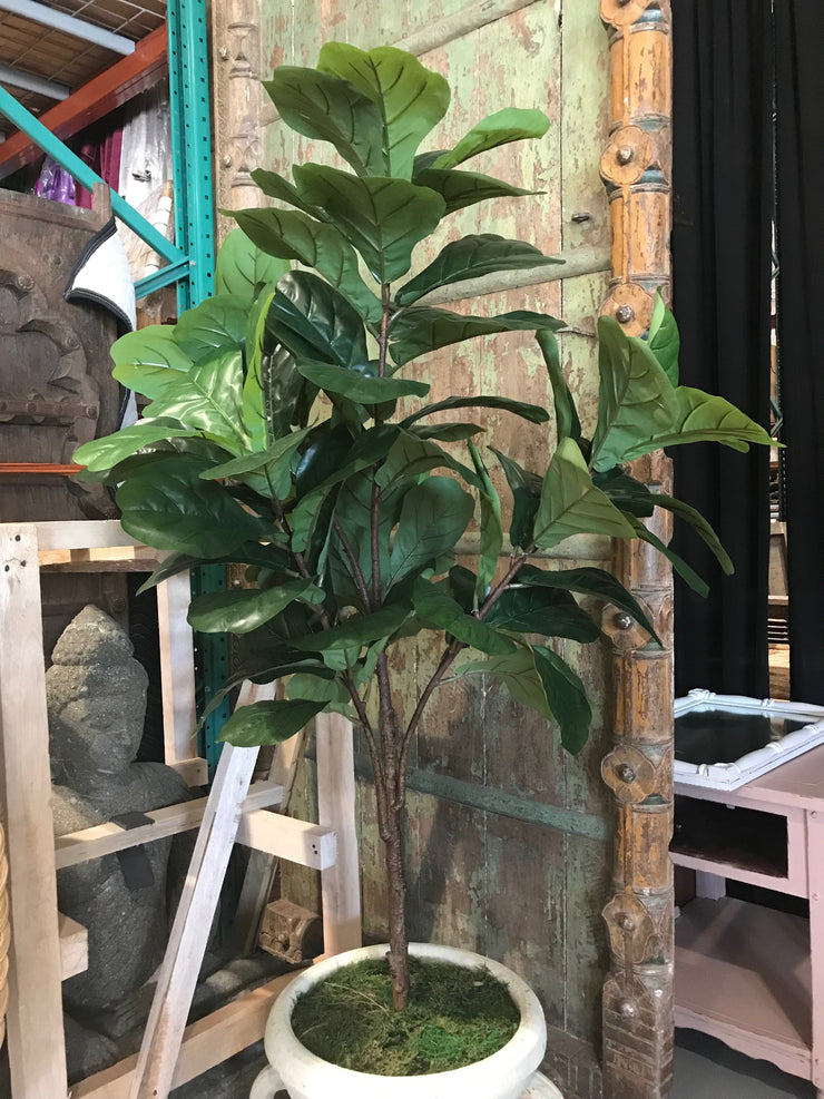Faux 6 Foot Fiddle Leaf Fig Tree