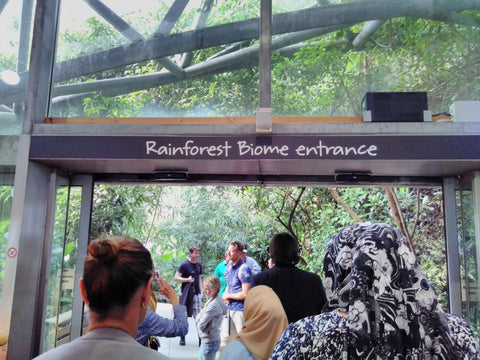 The Eden Project Tour with Dan Ryan Entrance to the Rainforest Biodome- BSEP Academy ladies visited August 2018