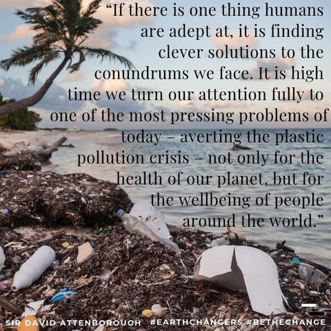 David Attenborough quote - Plastic Free July