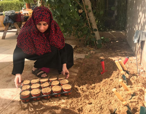 Sabeena Ahmed filling plant pots. Proud to support Give A Ghaf Tree Initiative with Social Enterprise Goumbook, at Sustainable City, Dubai, UAE - January 2020