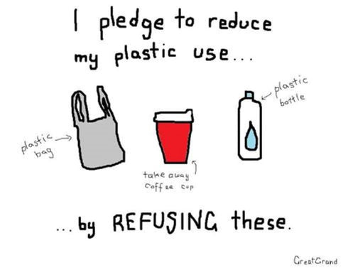 I pledge to refuse my plastic use by refusing these illustration - Artist Great Grand