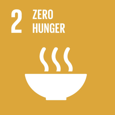 Global Goals for Sustainable Development Global Goal 2 Zero Hunger - Anti Poverty Week in Dubai and the UAE by the Lilfairtrade Shop