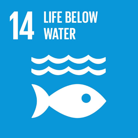 Global Goals for Sustainable Development Global Goal 14 Life Below Water - Anti Poverty Week in Dubai and the UAE by the Lilfairtrade Shop
