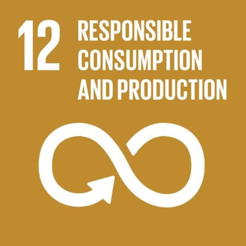 Sustainable Development Goal 12 - Responsible Consumption and Production - Plastic Free July