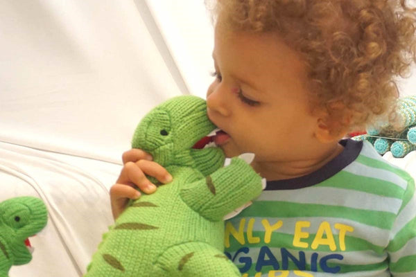 Knitted Original Fair Trade T-Rex – a world first!