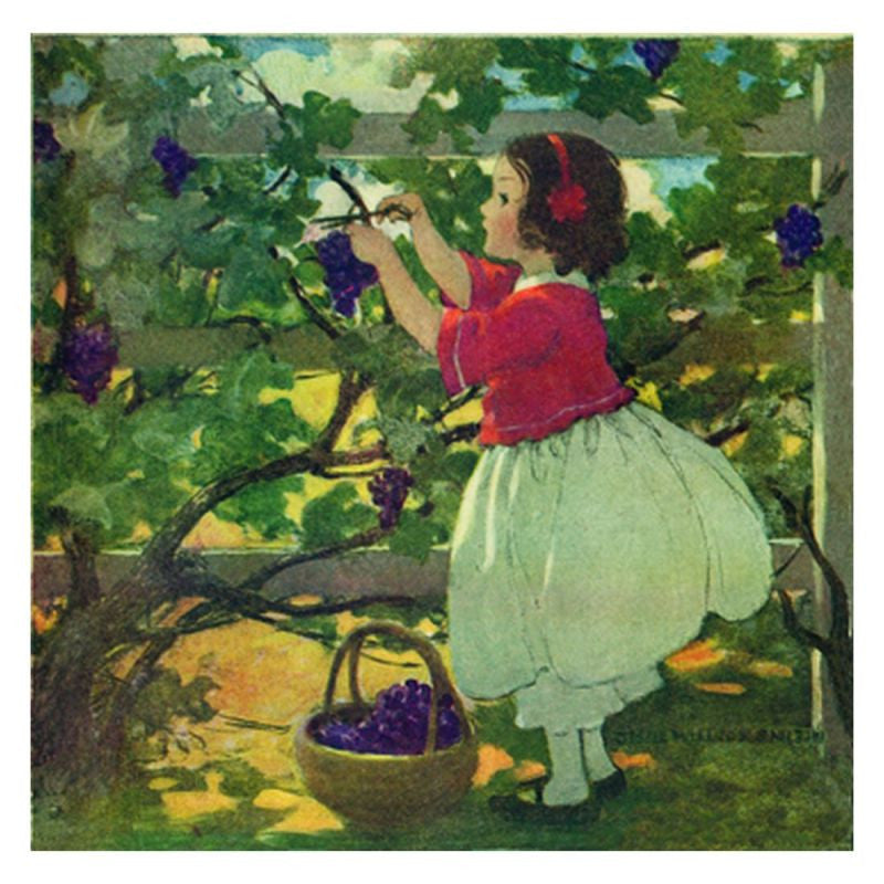 Jessie Willcox Smith Greeting Cards (Set of 6): Picking Grapes