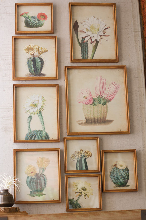 SET OF 9 ASSORTED CACTUS FLOWER PRINTS