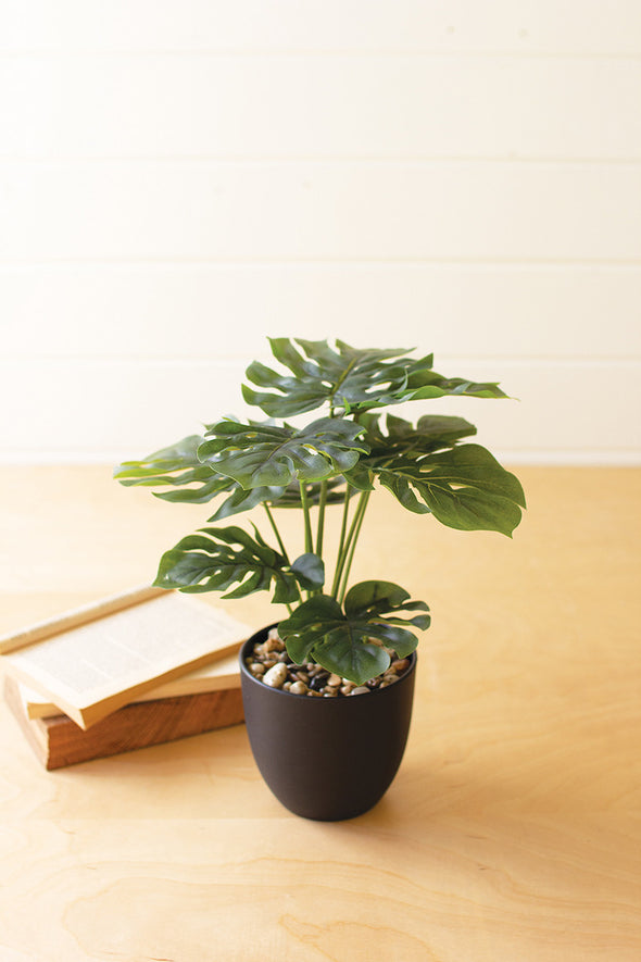 artificial monstera plant in a plastic pot \ small