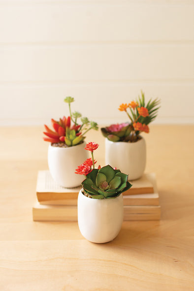 set of 3 artificial succulent plants in a white ceramic pot