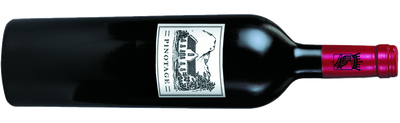 Lusthof Pinotage Little Vineyard 2013