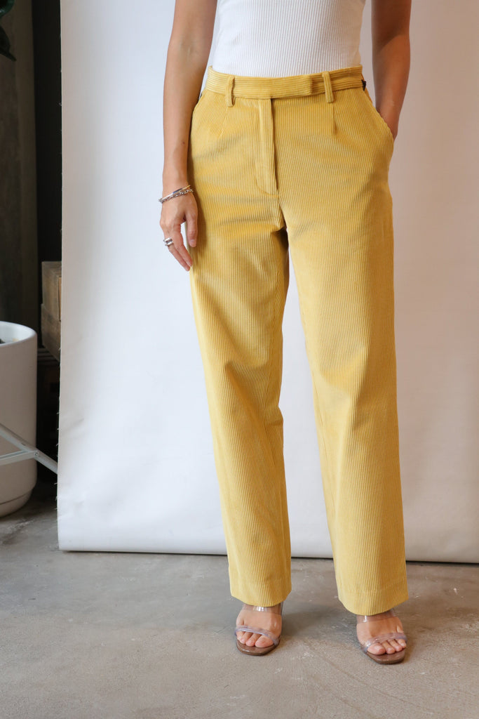 Maryam Nassir Zadeh Harp Trousers in Turmeric