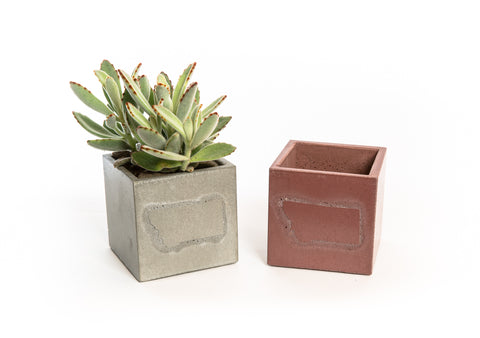 A set of two personalized concrete planters. One in grey with a succulent potted in it, one in clay-brown and empty.