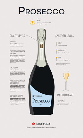 An infographic depicting the qualities of a prosecco.
