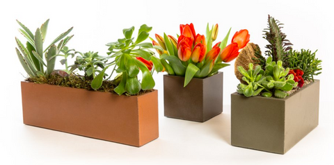 concrete planters with flowers