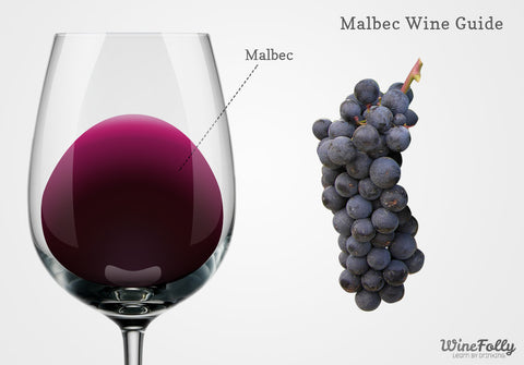An infographic showing the color of Malbec wine and grapes.