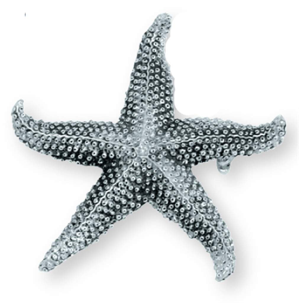 Starfish Jewelry Pin JP-278