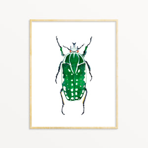 Beetle No. 6