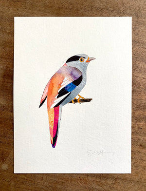 "Broadbill on 9""x12"" Cold Press Watercolor Paper"