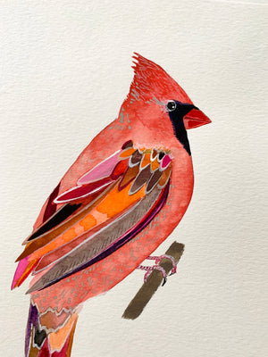 "Male Cardinal on 9""x12.5"" Cold Press Watercolor Paper"