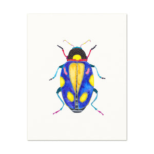 Beetle No. 13